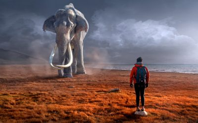 Hvordan spiser man en Elefant? Design dit nytårsforsæt til at lykkes